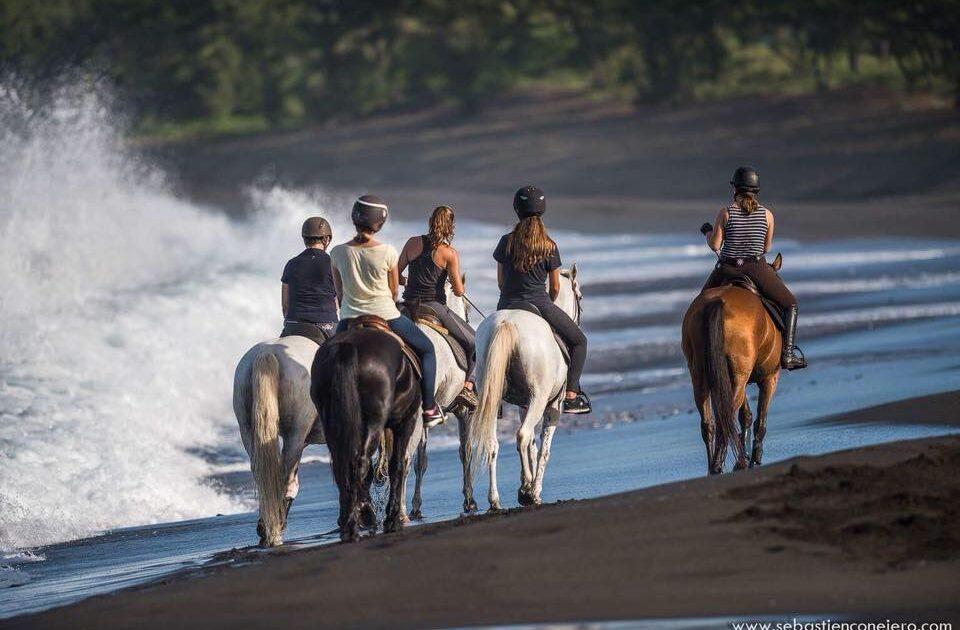 Faites du cheval à l'Etang Salé avec Keylodge conciergerie saisonnière à la Réunion