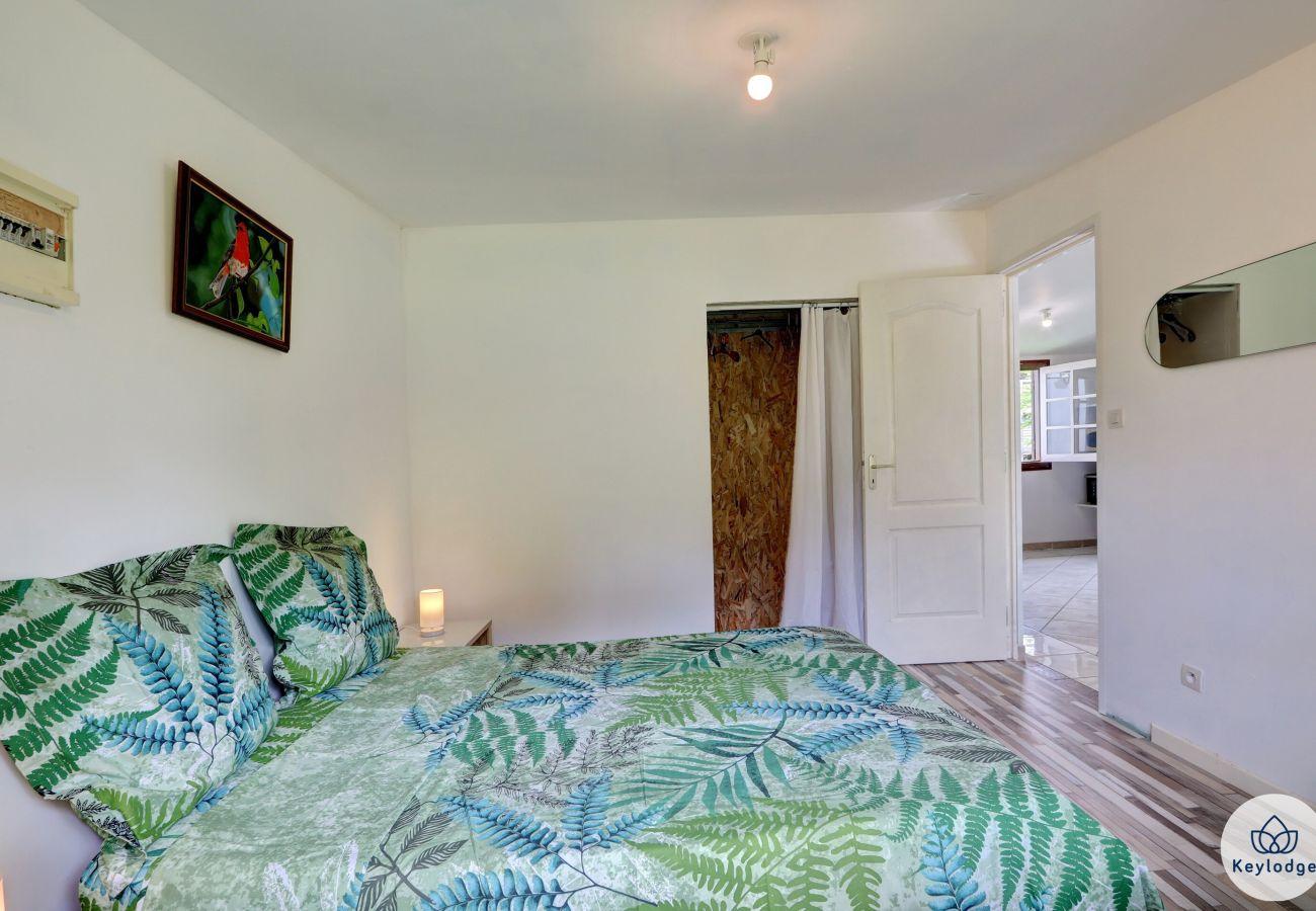 House in SAINTE ROSE - Kaz Les Flamboyants - 40m2 - Swimming pool - Sainte-Rose